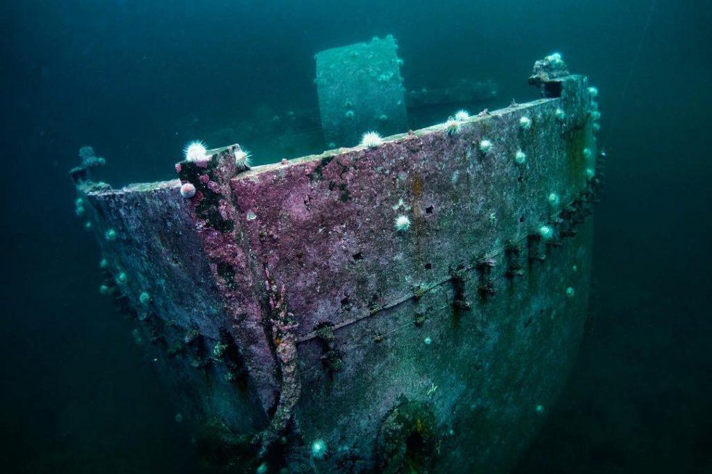 Barenfels steamship wreck